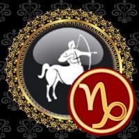Sagittarius with Capricorn compatibility